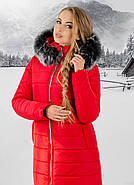 Женская зимняя молодежная куртка Флорида с капюшоном / размер 50 / цвет красный серый мех, фото 2
