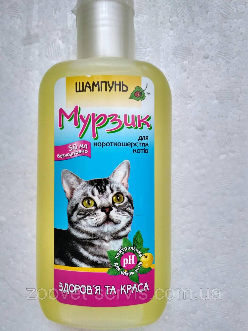 Шампунь для короткошерстных кошек Мурзик