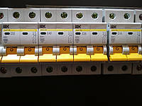 Автоматический выключатель ВА 47-29 2 полюса 20А кривая С