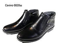 Ботинки мужские зимние  натуральная кожа черные на молнии (0020), фото 1