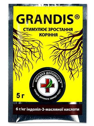 Укоренитель GRANDIS/Грандис, 5 г — эффективный укоренитель для саженцев, цветов, овощных культур, фото 2