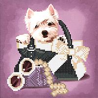 Схема бисерная Болонка в сумочке