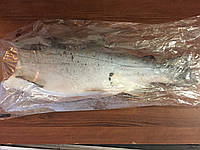 Рыба форель без головы патрошенная