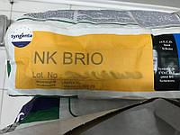 НК Бріо (NK BRIO) Syngenta 2016 9,6кг Туреччина