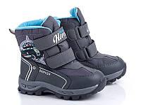 Новая коллекция зимней обуви оптом. Детская зимняя обувь бренда EeBb для мальчиков (рр. с 27 по 32)