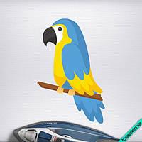 Термоаппликации для бизнеса на джемперы Попугай ара [7 размеров в ассортименте]