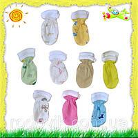 Царапки для малышей