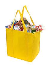 Господарська сумка-холодильник