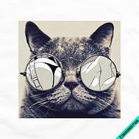 Картинки для бизнеса на шарфы Кот в очках [7 размеров в ассортименте]