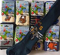 Детские махровые колготки для мальчика Дракоша  82-164см.