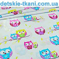 Бязь польская с разноцветными совами на серой веточке, фон ткани - белый № 936