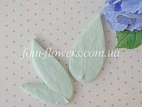 Набор молдов  лист Клематиса реалистичный, фото 1
