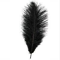 Перо страуса 35см (черное)