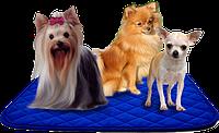 Пелёнки для собак