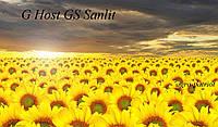 Семена подсолнечника GS SUNLIT (Санлит)