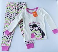 """Пижама """"Зебра"""" Gymboree для девочки 2, 4 года"""