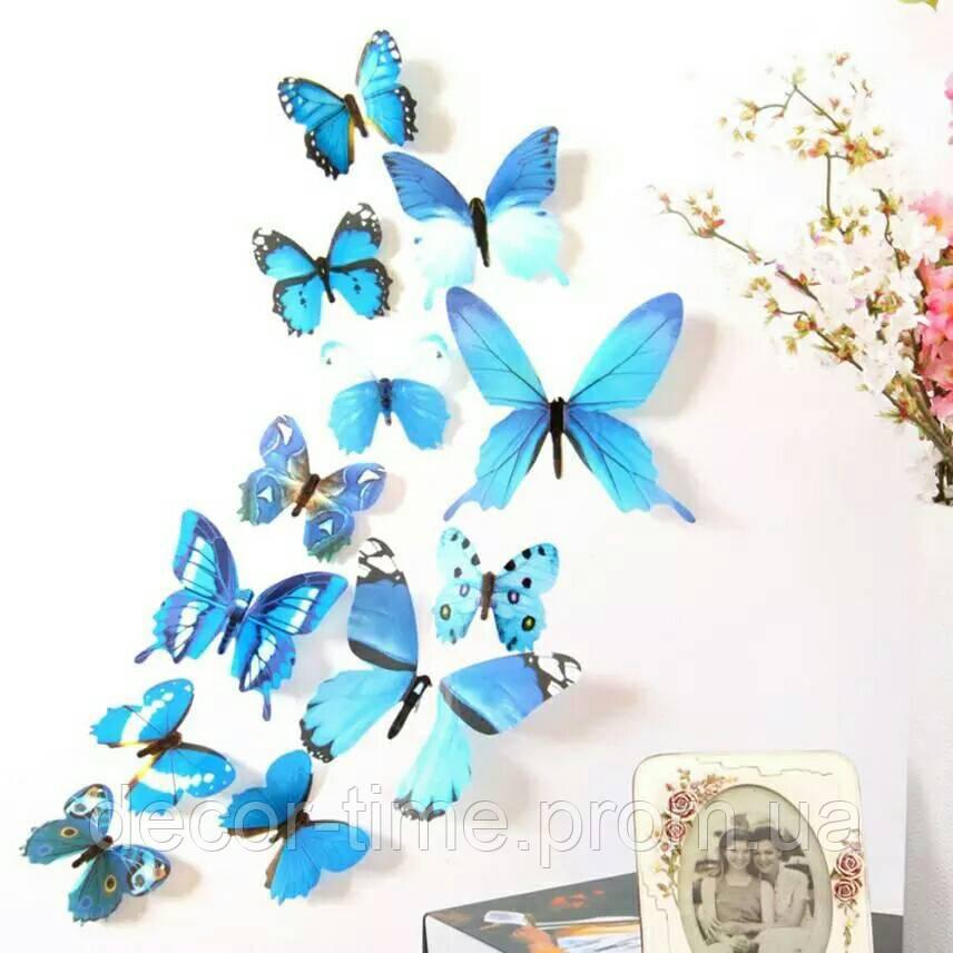3d  бабочки Голубые  (1825)