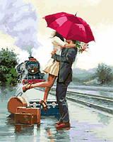 Картина по номерам 40×50 см. Долгожданная встреча Художник Ричард Макнейл, фото 1