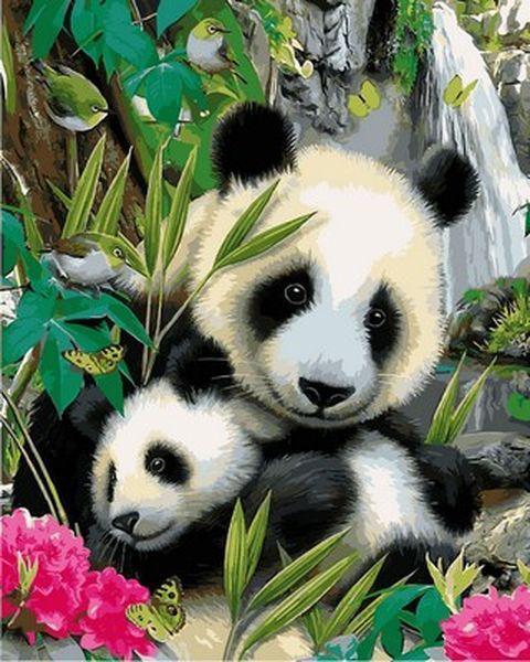 Картина по номерам 40×50 см. Панды