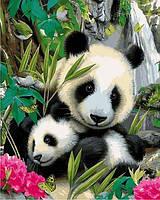 Картины по номерам 40×50 см. Панды, фото 1