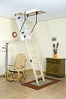 Лестница чердачная Oman Termo S, короб 120x60