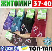 Женские носки с махрой тёплые зимние Житомир ТОП-ТАП  Украина 37-40 размер  НЖЗ-01407