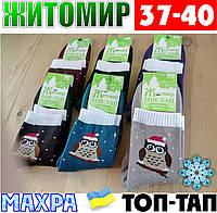 Женские носки с махрой тёплые зимние Житомир ТОП-ТАП  Украина 37-40 размер  НЖЗ-01412