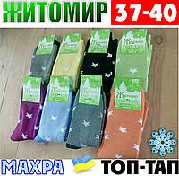Женские носки с махрой тёплые зимние Житомир ТОП-ТАП  Украина 37-40 размер  НЖЗ-0101410