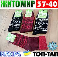 Женские носки с махрой тёплые зимние Житомир ТОП-ТАП  Украина 37-40 размер ассорти  НЖЗ-01418