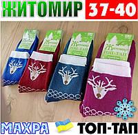 Женские носки с махрой тёплые зимние Житомир ТОП-ТАП  Украина 37-40 размер  НЖЗ-01411
