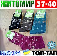 Женские носки с махрой тёплые зимние Житомир ТОП-ТАП  Украина 37-40 размер ассорти  НЖЗ-01416