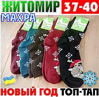 Женские носки с махрой тёплые зимние Житомир ТОП-ТАП  Украина 37-40 размер ассорти  НЖЗ-01419