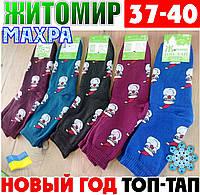 Женские носки с махрой тёплые зимние Житомир ТОП-ТАП  Украина 37-40 размер ассорти  НЖЗ-01420