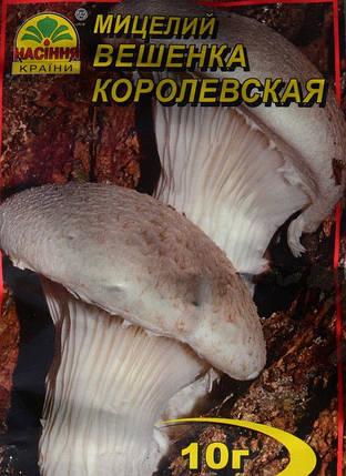 Мицелий гриба  Вешенка Королевская, 10 г, фото 2