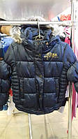 Куртка девочка еврозима МЕХХ синяя р.5-6 лет.