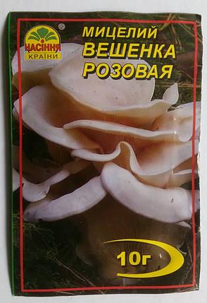 Мицелий гриба Вешенка розовая, 10 г, фото 2
