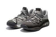 Баскетбольные кроссовки Adidas Crazy Explosive Low grey