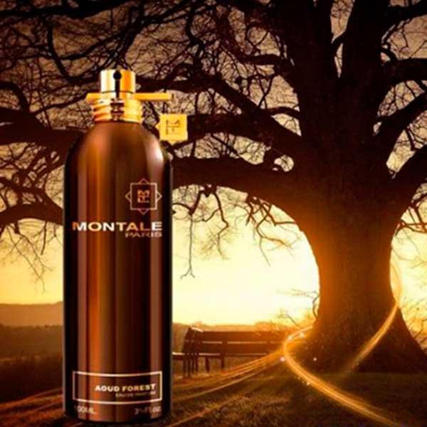 MONTALE Aoud Forest (Монталь Уд Форест) парфюмированная вода - тестер, 100  мл, цена 649 грн., купить в Киеве — Prom.ua (ID#590528498)