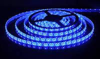 LED 3528 Blue 60 12V без силикона. ЛЭД лента, гирлянда, лед лента светодиодная