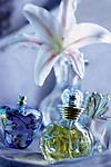 Все о парфюмерии, духах из Франции, все о духах Brocarda