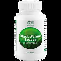 Листья чёрного ореха (Black Walnut Leaves)- от глистов у детей, усиливает перистальтику, от мастопатии