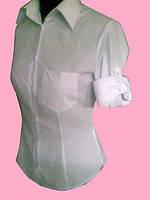Женская блузка на длинный универсальный рукав белого цвета