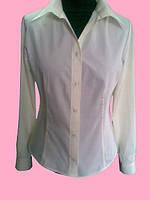 Женская блузка на длинный рукав цвет шампанского