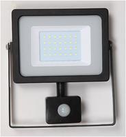 Прожектор DELUX FMI 10 LED 30 Вт 220В 6500К IP65 с датчиком движения, светодиодный