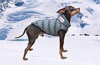 Жилет Diego sport 1 для собачек 23-28cм