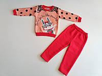 Утеплений костюм для дівчинки Baby Kids 1, 2 роки