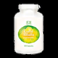 Корал Люцерна (Alfalfa) - микрофлора кишечника,лечение  воспалительных заболеваний, от кариеса, для кормящих