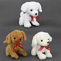 """Мягкая игрушка """"Собака"""" 3 вида, высота 23см  27*17**23 см. /120/"""