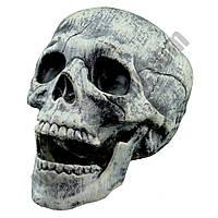Декор Череп 15см с подвижной челюстью (пластик)