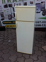 Холодильник Ardo Young AY 230